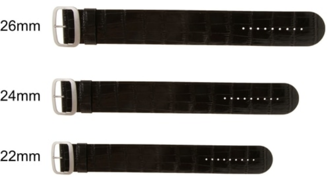 common sizes of watch band
