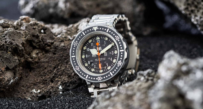 shock-resistant watch